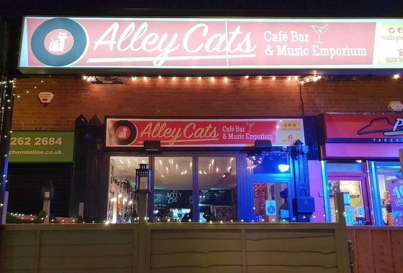 2019 01 14 Alley Cats Review 5