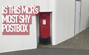 Shy Postbox Sleuth Copy