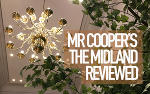 180125 Mr Coopers Review Copy