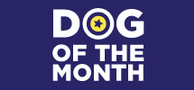 Dog Of The Month Confidentials Logo Thumb