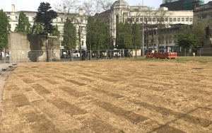 180509 Piccadilly Gardens Grass Img 2041