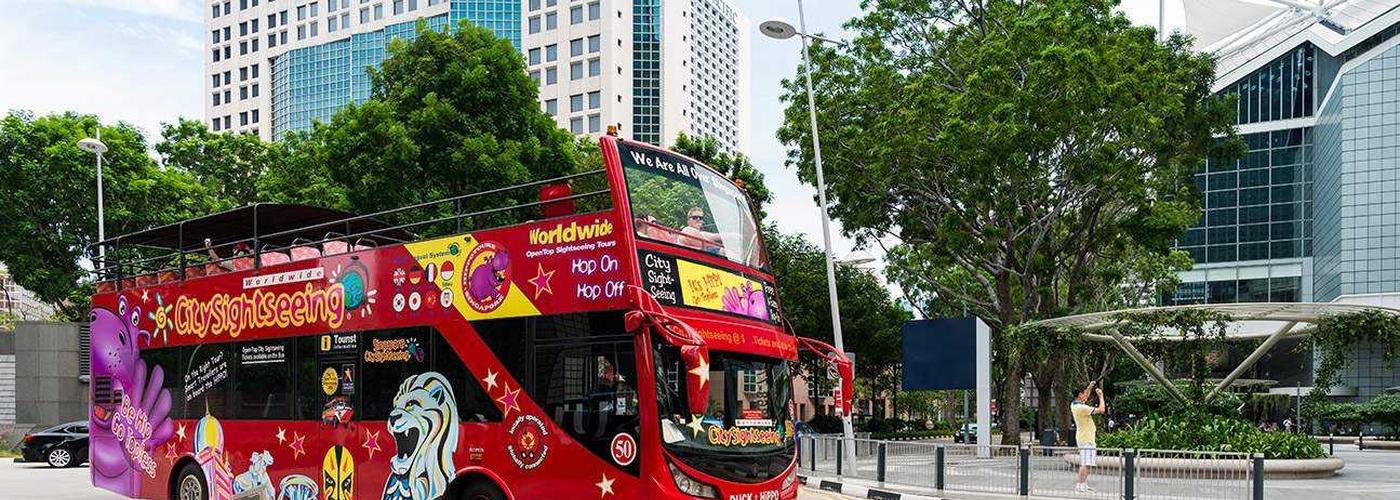 Sightseeing Bus 594F
