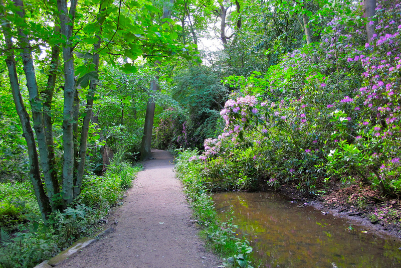 Meanwood Valley Trial Park