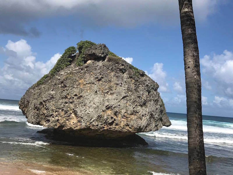 18016 Rock Bathsheba