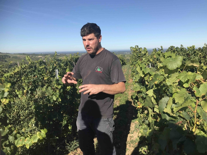 2019 11 10 Jura Winemaker Damien