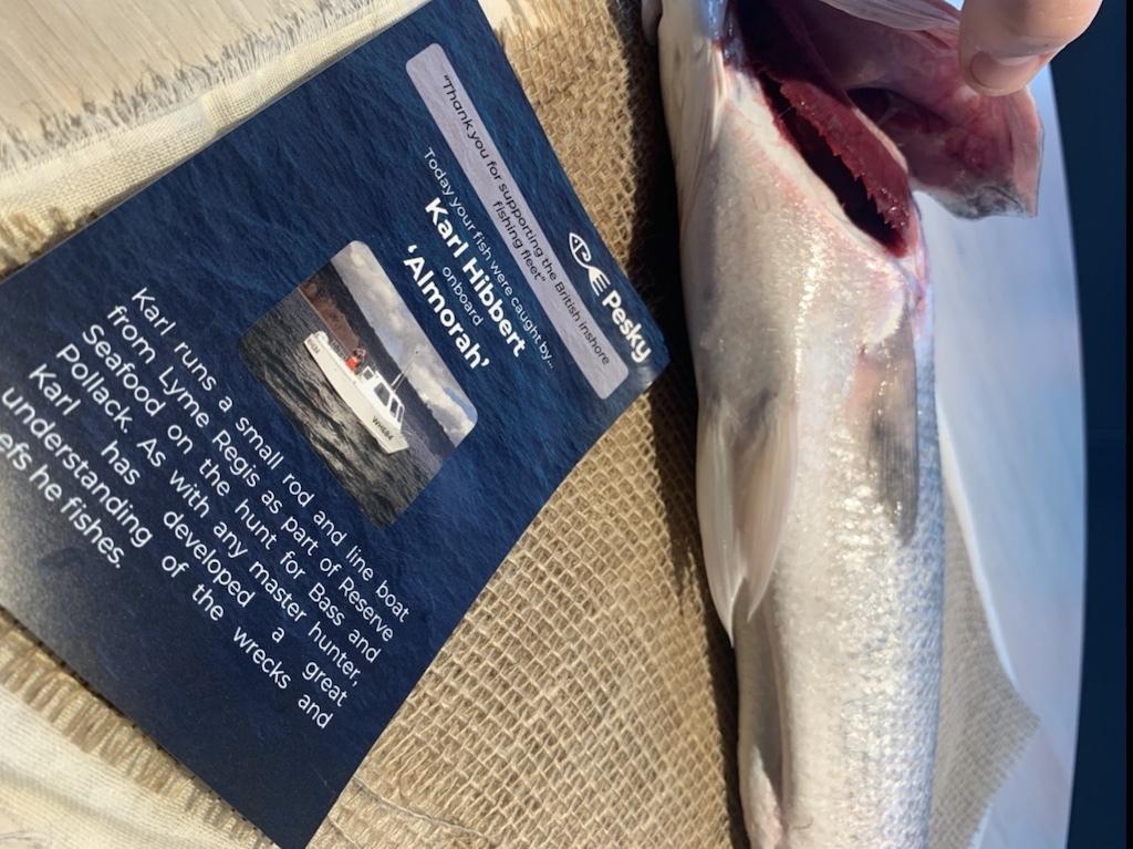 20-09-28-tine-fish.jpeg#asset:1000457