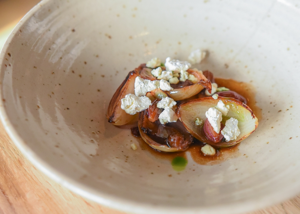 170227 Joro Review Onion