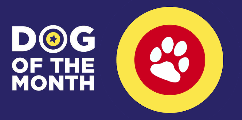 20190903 Dog Of The Month Banner