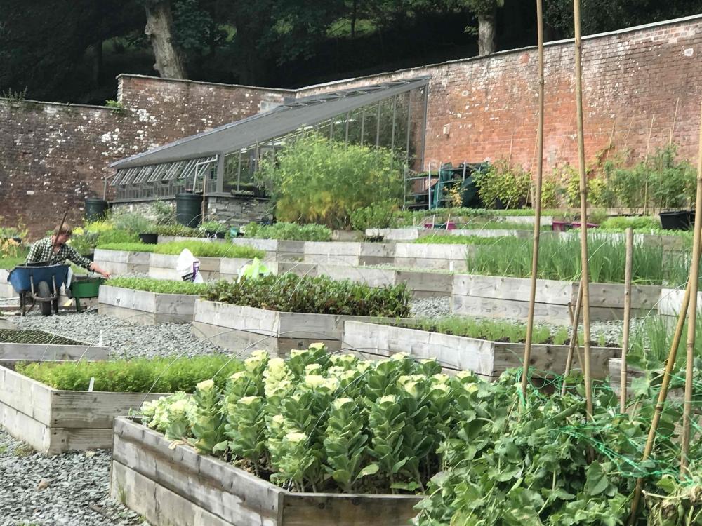 170725 Forest Side Review Kitchen Garden