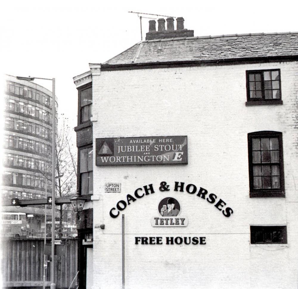 Coach Horses Picc