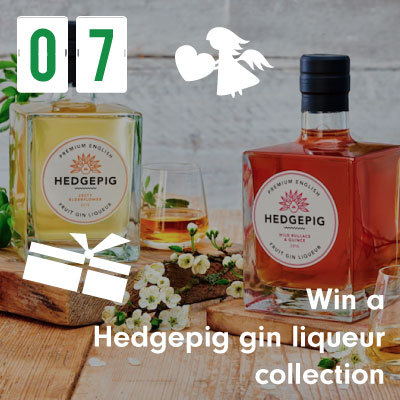 Win a Hedgepig gin liqueuer collection