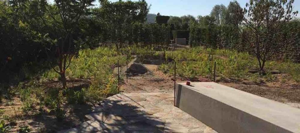 170716 170716 Garden Of Vulcan