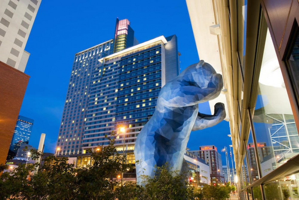 170826 Blue Bear