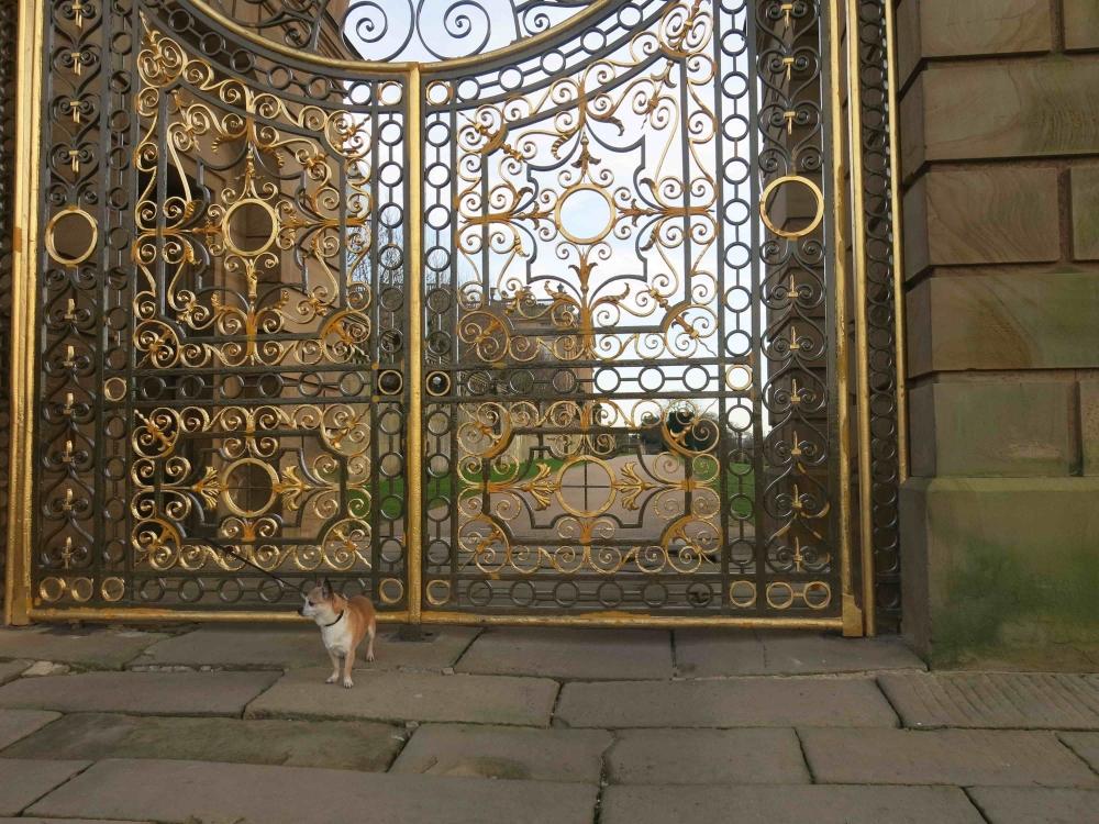 170420 Gates