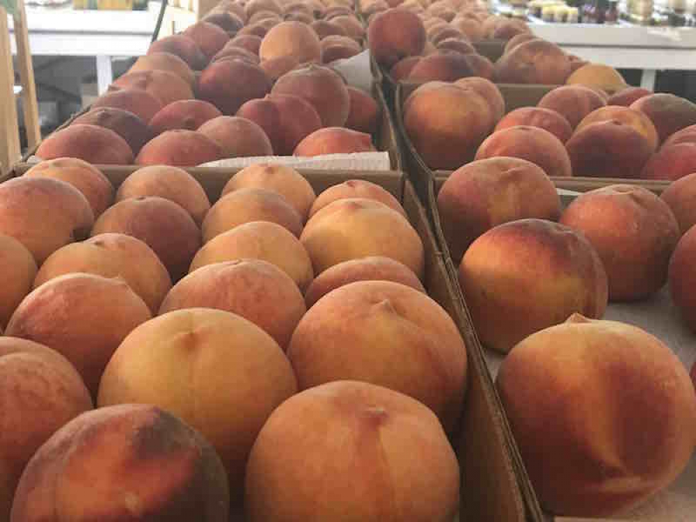 170824 Peaches